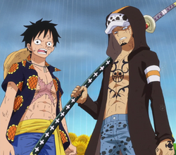 Law y Luffy van a por Doflamingo