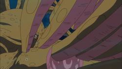 Zoro ferisce il kraken