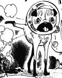 Saru Manga Infobox