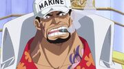Almirante da Frota Akainu