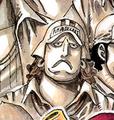 Onigumo jeune