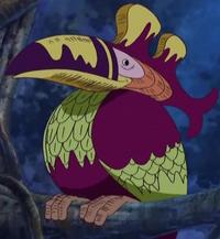 Jaya South bird
