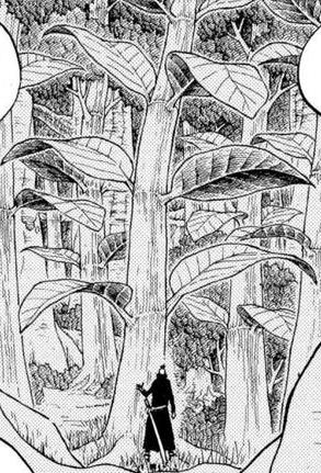 File:Kona Tree Infobox.png