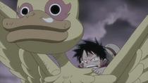 Luffy Muncul Menang dari Pertarungan dengan Shiki