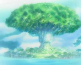 Arbre de la Cognition Anime Infobox
