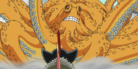 Surume Anime Infobox