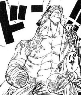 Farafra Manga Pre Timeskip Infobox