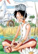 Rozdział 246 Luffy w białej kamizelce i z kotem na głowie, medytuje