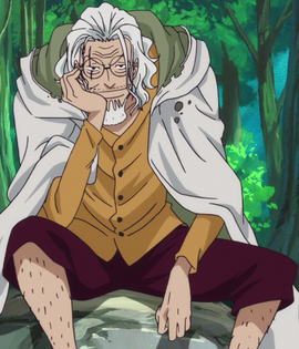 Silvers Rayleigh Anime Debut Infobox