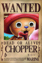 Chopper-wanted