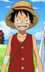 Luffy Right Before Timeskip