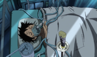 Luffy sauvé par Law
