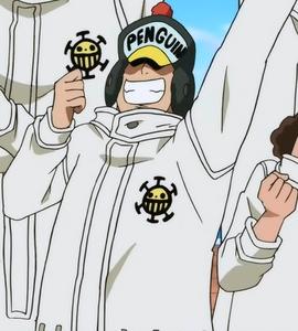 Penguin Anime Infobox