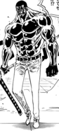 Vergo Full Body Haki