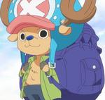 Chopper's Zou Departure Outfit