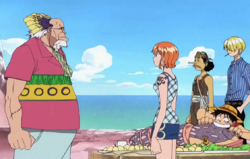 Crocus And Straw Hats Discuss Log Pose