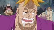 Marco pleure
