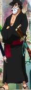 Kin'emon's Disguise Outfit Dressrosa Arc