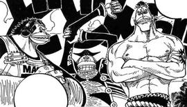 Saruyama Alliance Pre Timeskip Manga Infobox.png