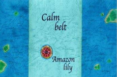 Amazon Lily in Calm Belt