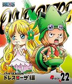 BD Season 17 Piece 22