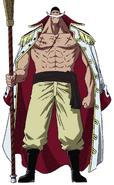 Whitebeard Anime Concept Art