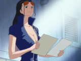 Nico Robin/History/During and After the Timeskip