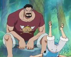 Luffy entrenamiento