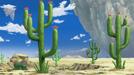 Merveille Desert
