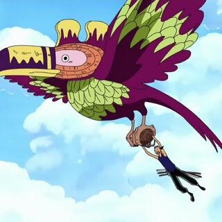 Ein Southbird fliegt mit Zoro.