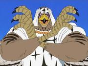 Birdbirdfalcon