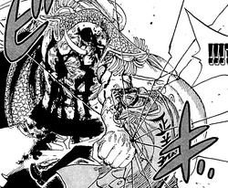 Barbabianca colpisce Akainu