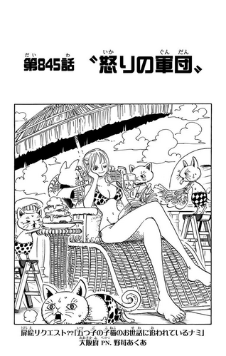 Chapter 845