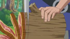 Kuku Kuku no Mi Anime Infobox
