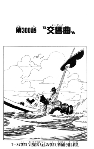 Chapter 300