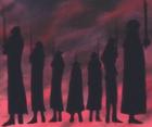 Shichibukai dans l'ombre