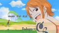 Fight Together Nami souriante