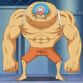 Hito Hito no Mi Forme Animale Anime Infobox