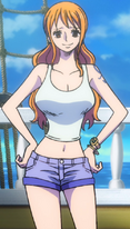 Nami Stampede Outfit 3