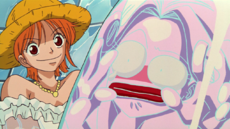 Nami captura a Honey