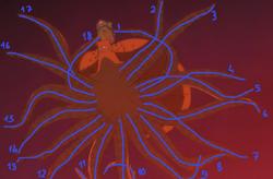 Surume's 18 Tentacles
