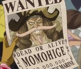 Pinkbeard's Wanted Poster