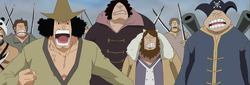 Whitebeard's Subordinates at Marineford