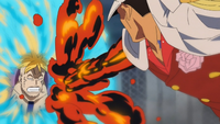 Marco arrête Akainu