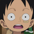 Monkey D. Luffy Child Portrait
