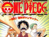 One Piece Novels