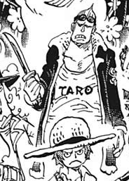 Taro Second Outfit