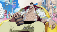 Whitebeard Pirates Brand New World