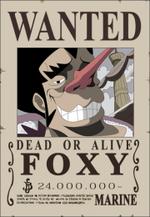 Foxy taglia