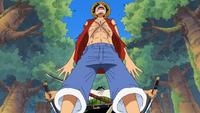 Luffy vs. Zoro